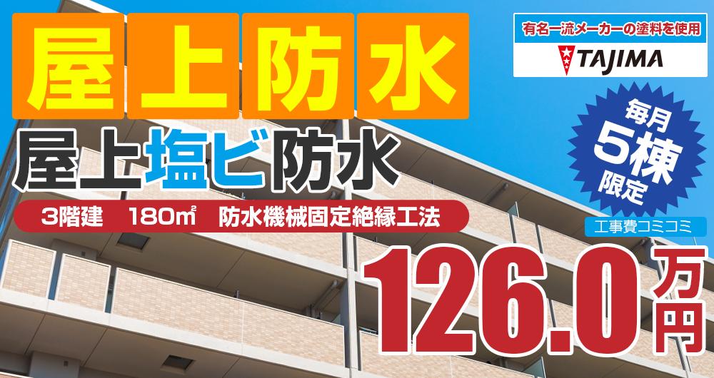ラジカルプラン塗装 1260000万円